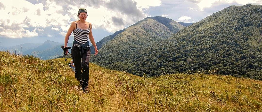 Brazil´s Atlantic Rainforest | Mata Atlântica Expeditions